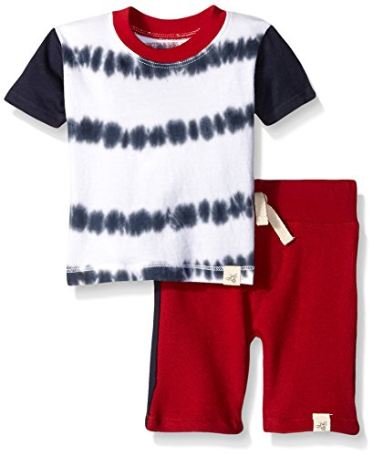 Burt's Bees Baby Baby Organic Tie Dye Stripe Tee and Short Set, Midnight, 6-9 Months Boys Tie Dye Short