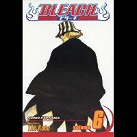 Bleach, Vol. 6: The Death Trilogy Overture