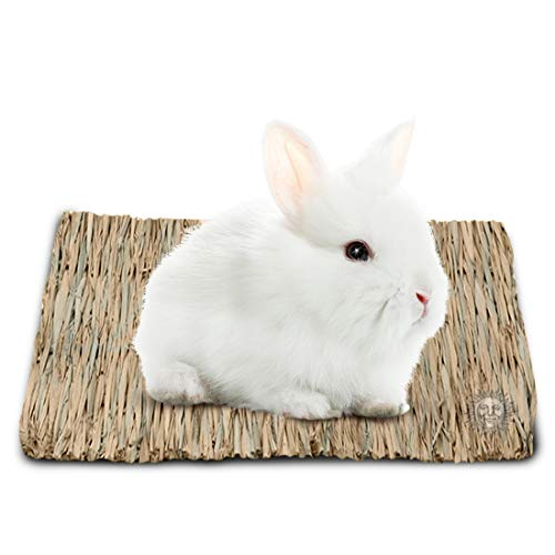 - Seagrass Rabbit Mat - Protect Paws from Wire Cage - Treat Bunny's Sore Hocks - Handmade Woven Play Bed - Pet-Safe, Edible Chew Toy - Water-Resistant, Eco-Friendly Couch - Add in Cage or on Floor