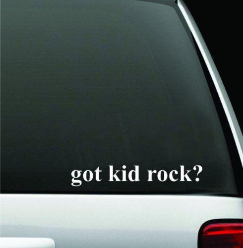 "got kid rock? White Decal Sticker High Quality Vinyl 2"" X 8"""