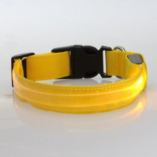 Eliteshine Fashionable Flashing Nylon LED Light Pet Dog Safety Collar (TM-XQ, Yellow, M) -