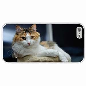 Customized Apple iPhone 5 5S PC Hard Case Diy Personalized DesignCover mordashka White