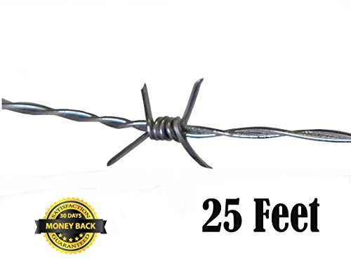 old barbed wire - 2