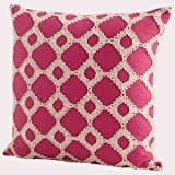 Cyan lighting 06505 18'' Repeat After Me Pillow, Pink Finish