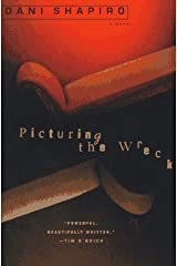 Picturing the Wreck Paperback