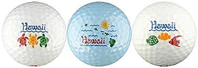 EnjoyLife Inc Hawaii w/Turtles, Island Map & Fish Golf Ball Gift Set
