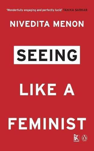 Seeing Like a Feminist