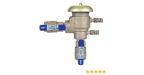 Febco 765fbv 1 1 4 Inch Pressure Vacuum Breaker With Quarter Turn Shutoff Amazon Com