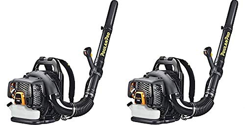 Poulan Pro 967087101 48cc Backpack Blower (Pack of 2)