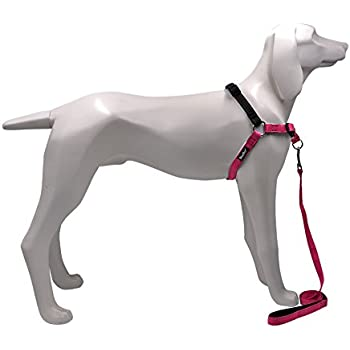 No Pull Best Dog Harness - with Leash Comfortable Safe for Pet Convenient Training and Walking, Pink Small