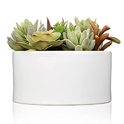 MyGift Decorative Faux Potted Succulents/Artificial Plant in 6 Inch Glazed Round Ceramic Flower Pot