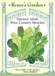 Mesclun Salad - 9