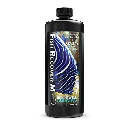 Brightwell Aquatics Fish Recover M Natural Herbal Medication for Open Sores, 1 L