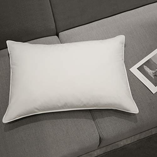(Homtyler Natural White Goose Down Feather Pillow,Luxury Bed Pillow for Sleeping,100% Egyptian Cotton Fabric Cover,Bed Pillow Downproof- Standard/Queen)