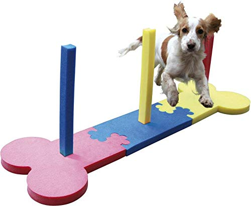 Agility Slalom - Dog play & exercise toy by Rosewood Pet