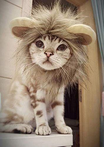 Legendog Cat Halloween Costume Lion Mane Wig Hat for Cats Pet Halloween Costumes for Small Dogs and Cats