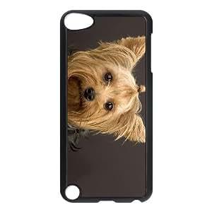 Perros Categoría de perro de Yorkshire Terrier freein PET DOG funda iPod Touch 5 Funda Caso de la cubierta negro, funda de plástico caja del teléfono celular