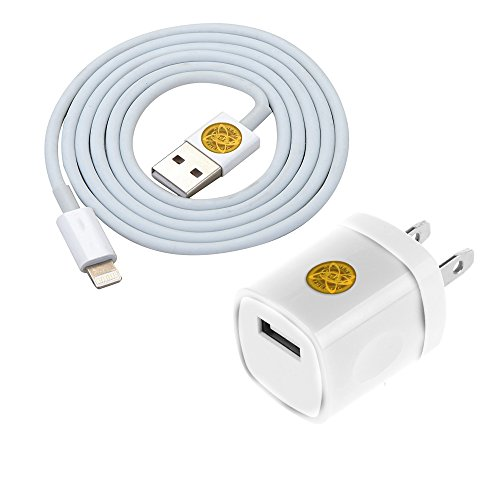 Premium Lightning Charge Charger Adapter