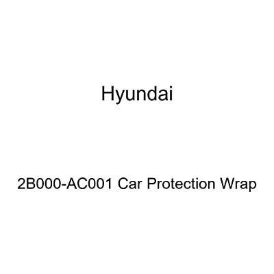 HYUNDAI Genuine 2B000-AC001 Car Protection Wrap: Automotive