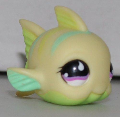 lps fish - 5