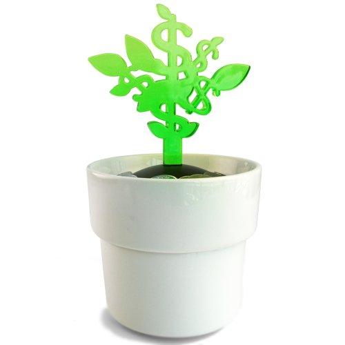 (MollaSpace Money Tree Coin Bank, Green)
