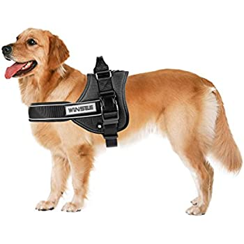 Extra Small Dog Harness Amazon