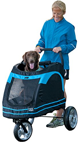 Pet Gear Roadster Pet Stroller for Dogs, Black/Blue