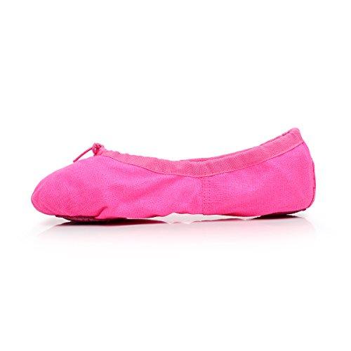 (Women's Canvas Ballet Slipper Split Sole Gymnastics Yoga Shoe (US9.5, Rose))