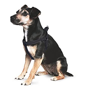 Ancol Padded harness Black, size Small: Amazon.co.uk: Pet Supplies