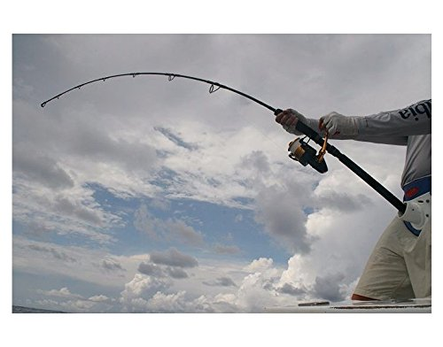 Penn Prevail Surf Spinning Fishing Rod