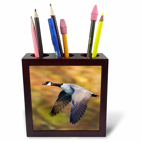 nt - Ducks - Canada Goose in Flight - 5 inch tile pen holder (ph_258063_1) ()