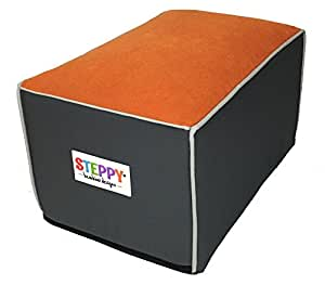 Amazon Com Steppy Car Step Stool Amp Footrest For Kids