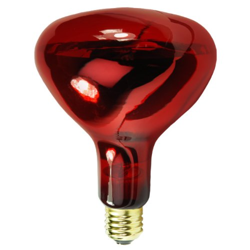 250 Watt - R40 Light Bulb - Ruby Red - Infrared Heat Lamp - 120 Volt - 5,000 Life Hours - Halco 104044