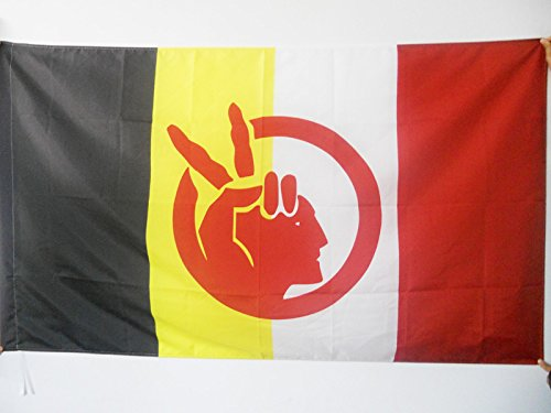 AZ FLAG American Indian Movement Flag 2' x 3' for a Pole - Native American Tribe Flags 60 x 90 cm - Banner 2x3 ft with Hole