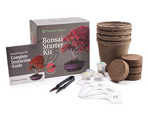 planters-choice-bonsai-starter-kit-with-bonsai-trimmer-complete-kit-to-easily-start-growing-4-bonsai