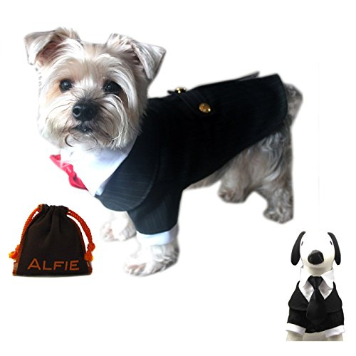 Alfie-Pet-by-Petoga-Couture-Oscar-Formal-Tuxedo-with-Black-Tie-and-Red-Bow-Tie