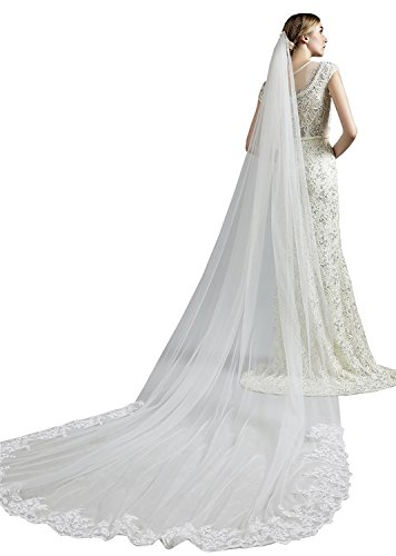 Pretydress 3M Cathedral Length Lace Appliques Wedding Bridal Veil With Comb (White, 3Meter)