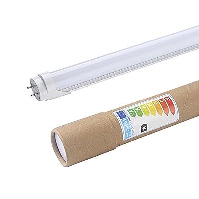 Shanhai 22W 130-2835SMD 1.5M/5FT LED T8 Tube Light with G13 Base, 22W (48W Equivalent), 2000lm, White Cover, G13 Led Light Fixtures