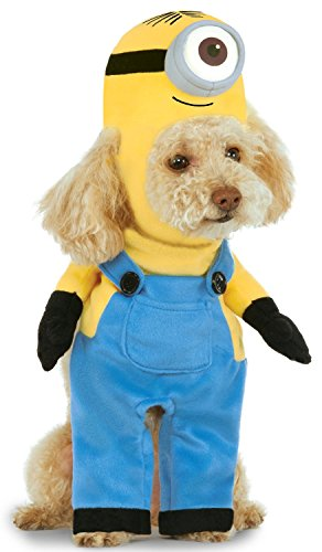Minion Stuart Arms Pet Suit, X-Large - Adult Agnes Costumes