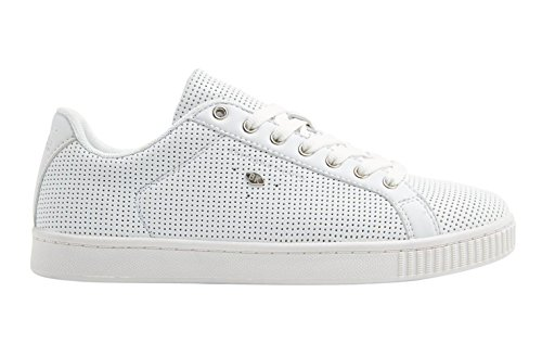 Cavaliere Britannico Duca Sneaker Bianco / Bianco