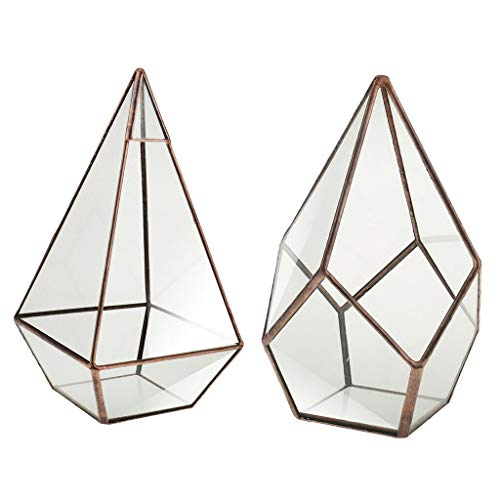 BROSCO Pyramid Diamond Geometric Terrarium Box Tabletop Succulent Planter Moss
