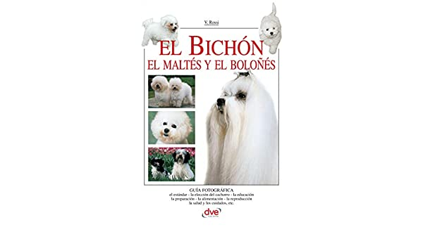 El Bichón (Spanish Edition) - Kindle edition by Valeria Rossi, Equipo Editorial Dve. Crafts, Hobbies & Home Kindle eBooks @ Amazon.com.