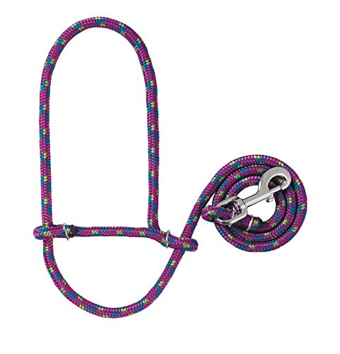 35 Leather (Weaver Leather 35-7845-K31 Poly Rope Sheep Halter with Snap, Average, Purple/Lime/Blue)