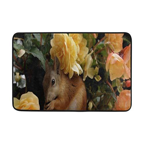 Lisang Squirrel Flower Door Mat Decorative Door Mat Indoor Outdoor House Doormat High Traffic Areas Non Slip Machine Washable Door Mats 23.6(L) x 15.7(W)