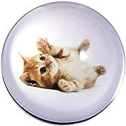 Waltz&F Crystal Small Cat Paperweight Galss Globe Hemisphere Home Office Table Decora
