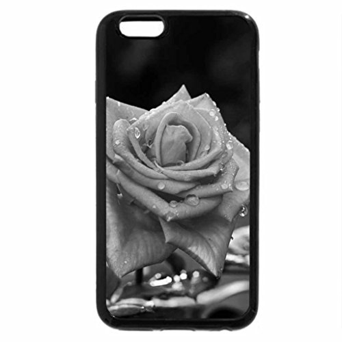 iPhone 6S Plus Case, iPhone 6 Plus Case (Black & White) - Lovely Rose for Margarita margarita8as