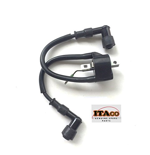 Ignition Coil w/ Plug Cover Assy 362-06050-1 fit Tohatsu Nissan Outboard 9.9HP 15HP 18HP 2-stroke (Plugs Ignition Cover)