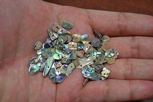 """100 PCS Tiny Small Abalone Shell Blank Charms 1/4"""" for sale  Delivered anywhere in USA"""