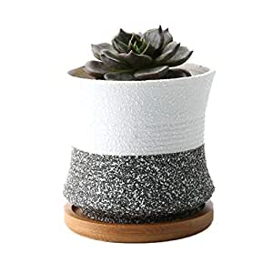 Rachel's Choice 8.4CM Korean Style Ceramic Succulent Pots Shape 2 Flower Cactus Planter with Bamboo Tray