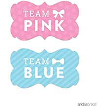 Andaz Press Team Pink Team Blue Gender Reveal Baby Shower Party, Fancy Frame Labels Stickers, Team Pink Team Blue, 36-pack, For Themed Party Favors, Gifts, Decorations